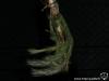 Tillandsia tricholepis spécimen #1 (2013)
