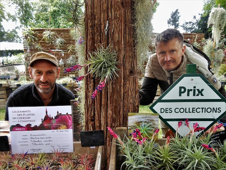 TillandsiaPROD : Daniel et Pierre